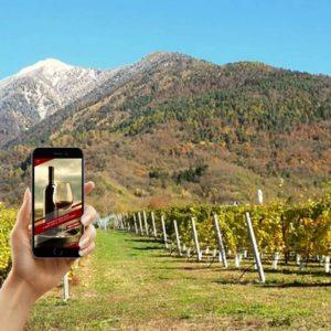 mamete prevostini - wine app