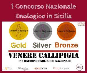 primo concorso enologico nazionale, wine app
